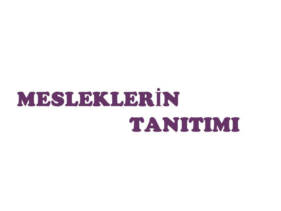 MESLEKLER İ N TANITIMI 7