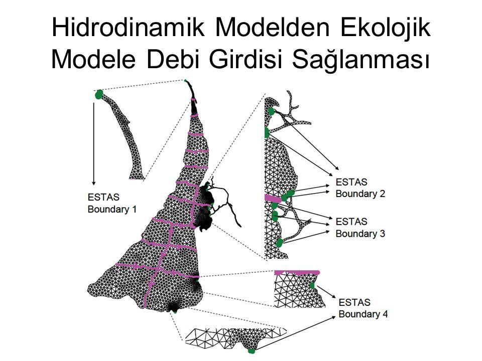 Hidrodinamik Modelden Ekolojik Modele Debi Girdisi Sağlanması