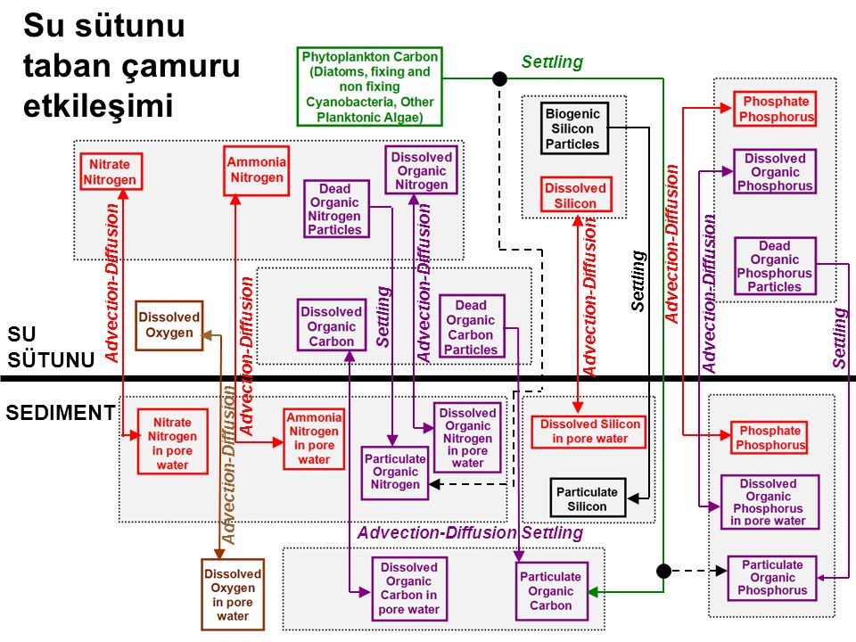 SEDIMENT SU SÜTUNU Advection-Diffusion Settling Su sütunu taban çamuru etkileşimi Settling