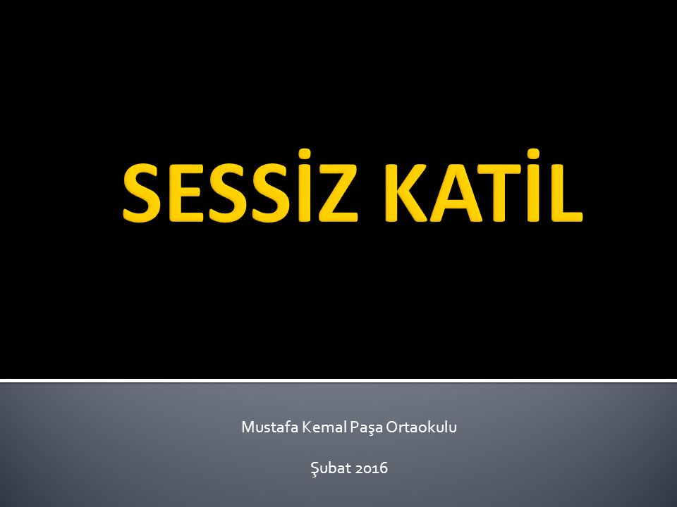 Mustafa Kemal Paşa Ortaokulu Şubat 2016