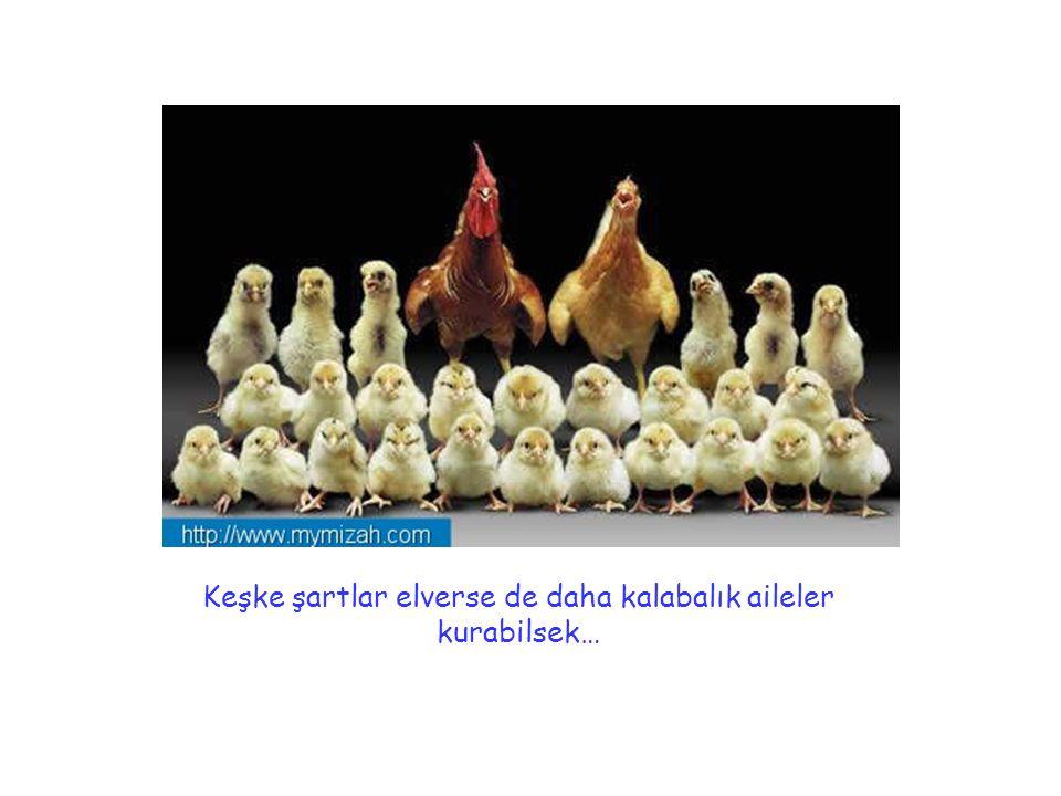 Aile olmayı seviyoruz…