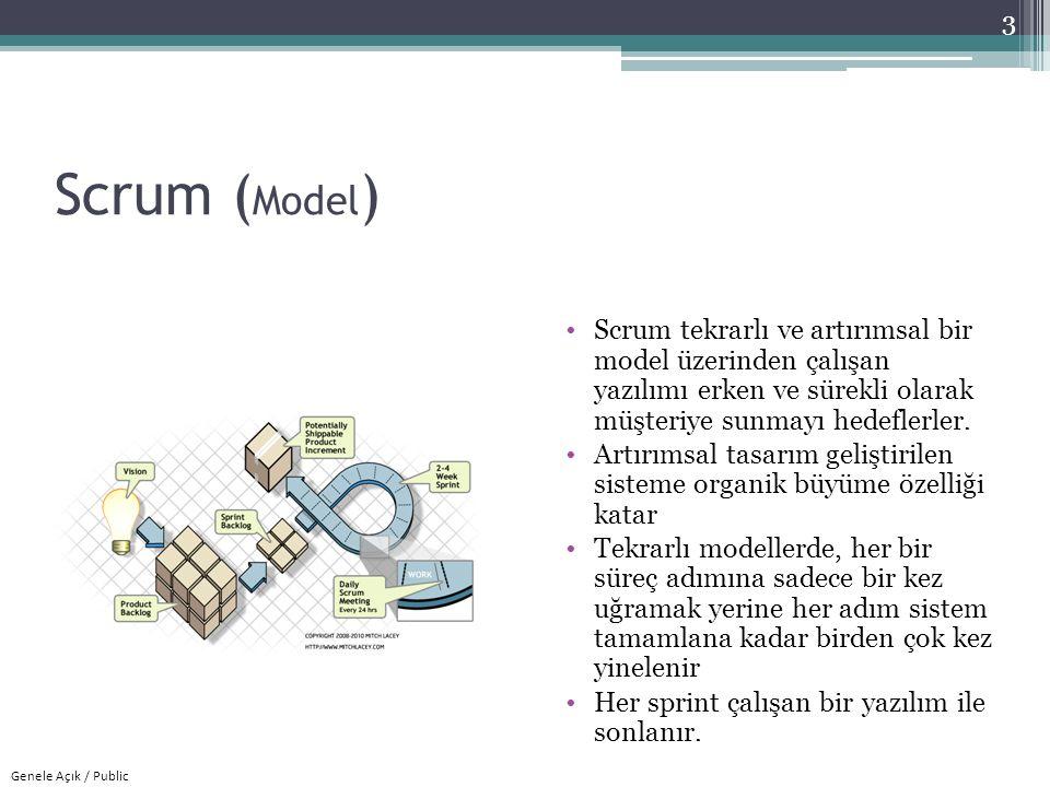 Genele Açık / Public Scrum (Roller) Scrum takımı, ürün sahibi, geliştirme ekibi (bu çalışma boyunca takım olarak adlandırılmıştır) ve Scrum üstattan oluşur.