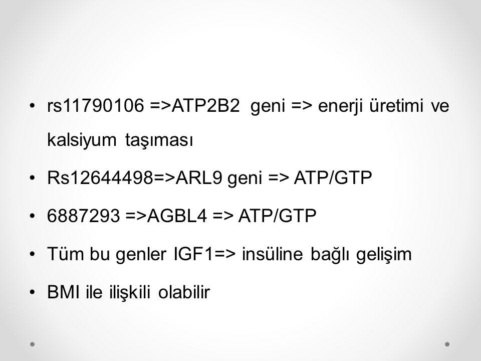 rs11790106 =>ATP2B2 geni => enerji üretimi ve kalsiyum taşıması Rs12644498=>ARL9 geni => ATP/GTP 6887293 =>AGBL4 => ATP/GTP Tüm bu genler IGF1=> insül