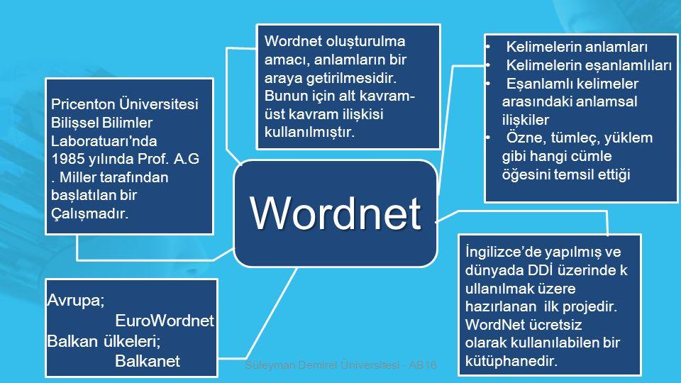 Süleyman Demirel Üniversitesi - AB16 Wordnet Pricenton Üniversitesi Bilişsel Bilimler Laboratuarı'nda 1985 yılında Prof. A.G. Miller tarafından başlat