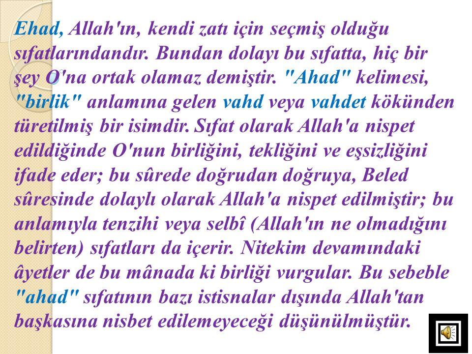 Ehad, Allah'ın, kendi zatı için seçmiş olduğu sıfatlarındandır. Bundan dolayı bu sıfatta, hiç bir şey O'na ortak olamaz demiştir.