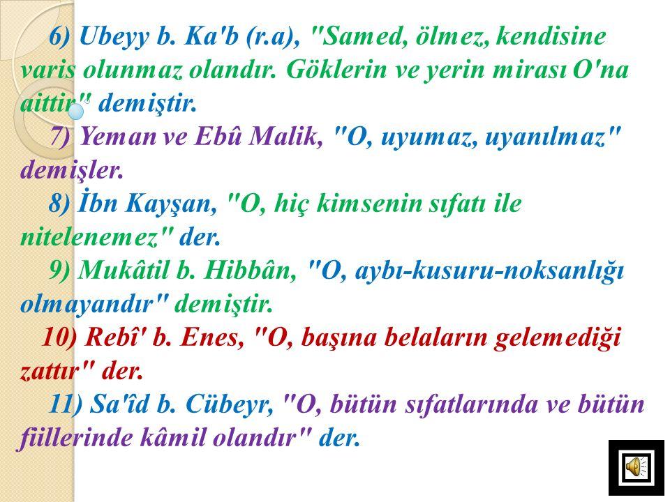 6) Ubeyy b. Ka'b (r.a),