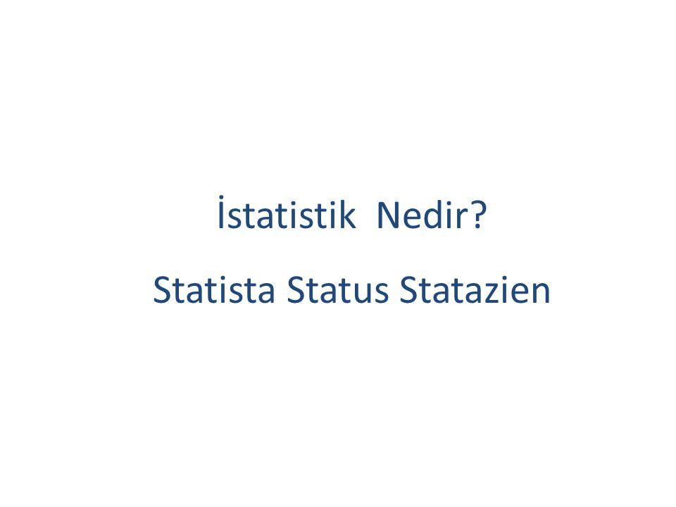 Alman istatistikçi Eugel, 1896 da La Haye de Uluslar arası istatistik kongresinde, istatistiğin 180 değişik tanımı bulunduğunu belirtmiştir.
