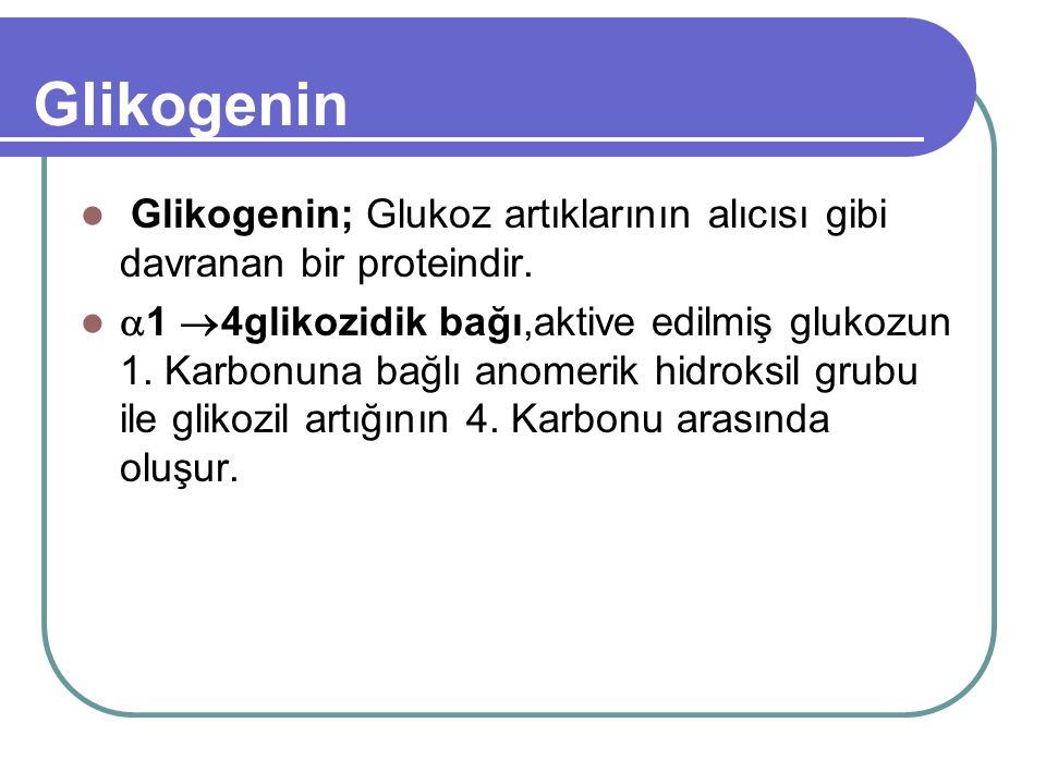 Glikogenin Glikogenin; Glukoz artıklarının alıcısı gibi davranan bir proteindir.  1  4glikozidik bağı,aktive edilmiş glukozun 1. Karbonuna bağlı ano