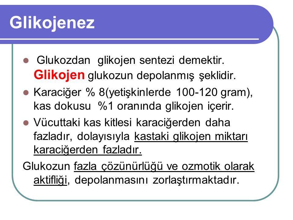 Glikojenez Glukozdan glikojen sentezi demektir. Glikojen glukozun depolanmış şeklidir. Karaciğer % 8(yetişkinlerde 100-120 gram), kas dokusu %1 oranın