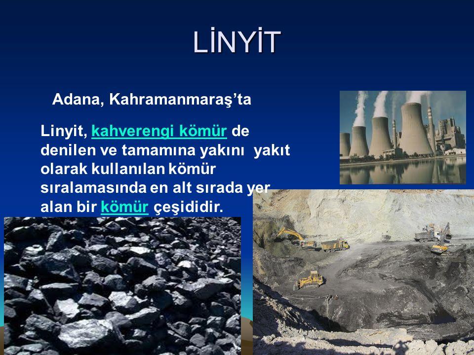 LİNYİT Adana, Kahramanmaraş'ta Linyit, kahverengi kömür de denilen ve tamamına yakını yakıt olarak kullanılan kömür sıralamasında en alt sırada yer al