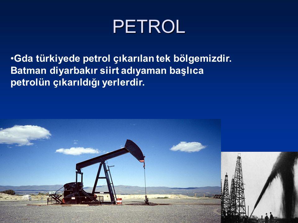 PETROL Gda türkiyede petrol çıkarılan tek bölgemizdir. Batman diyarbakır siirt adıyaman başlıca petrolün çıkarıldığı yerlerdir.