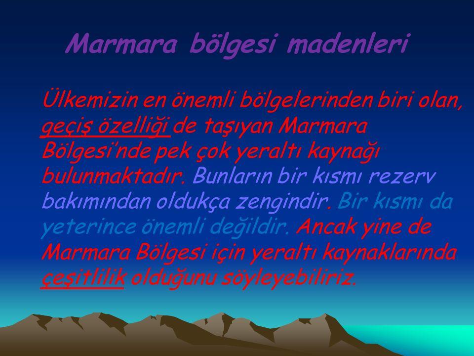 Marmara bölgesi madenleri Ülkemizin en önemli bölgelerinden biri olan, geçiş özelliği de taşıyan Marmara Bölgesi'nde pek çok yeraltı kaynağı bulunmakt