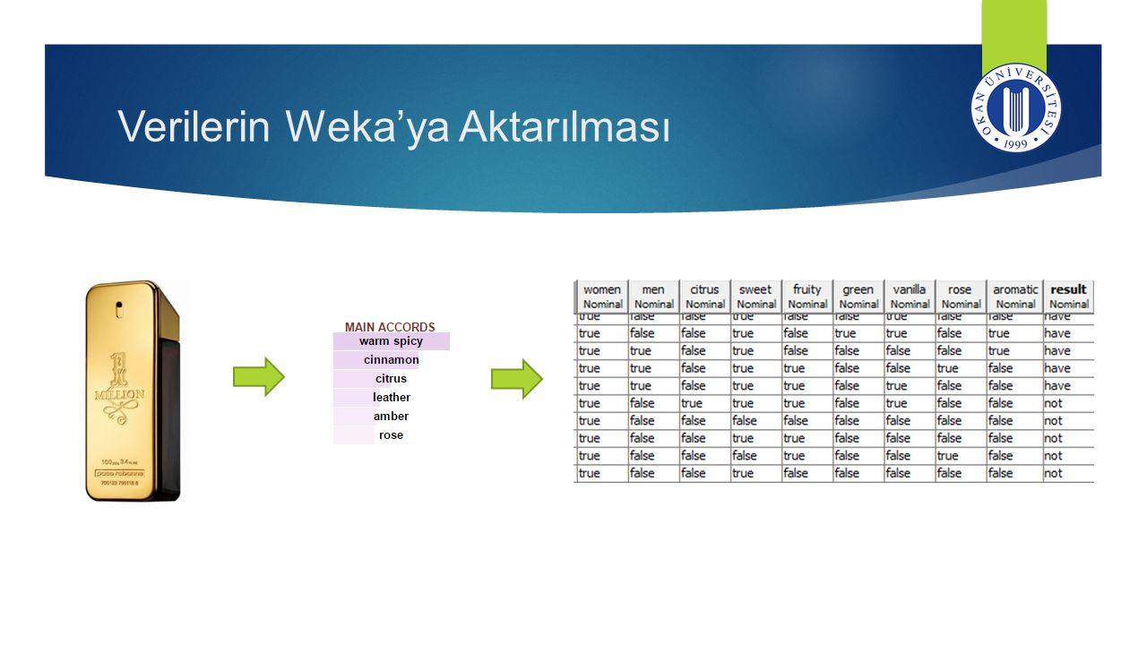 Verilerin Weka'ya Aktarılması