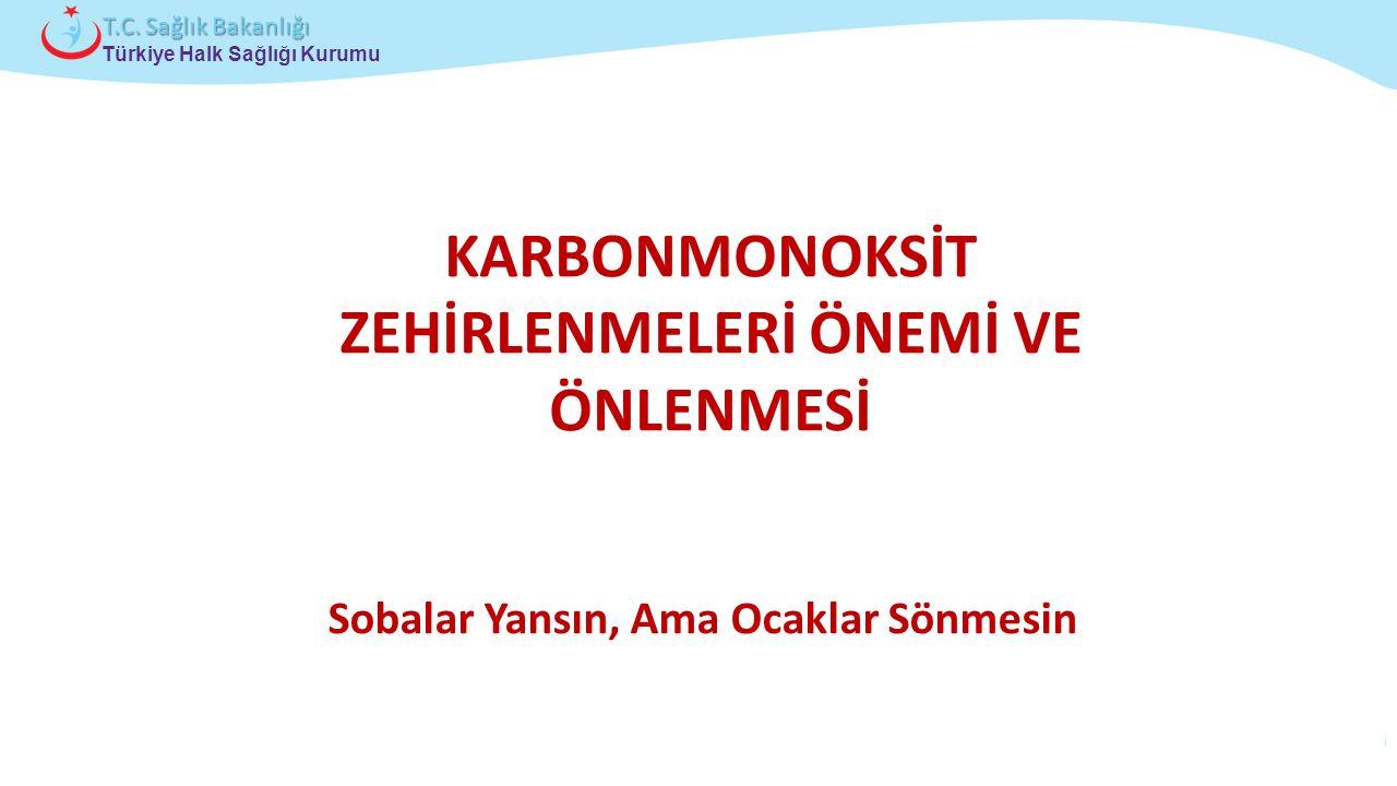 Çocuk ve Ergen Sağlığı Daire Başkanlığı Türkiye Halk Sağlığı Kurumu T.C. Sağlık Bakanlığı KARBONMONOKSİT ZEHİRLENMELERİ ÖNEMİ VE ÖNLENMESİ Sobalar Yan