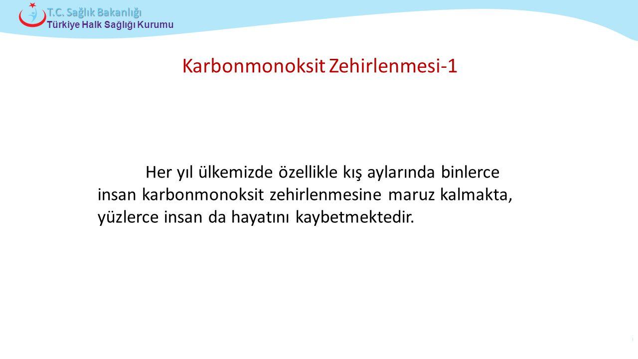 Çocuk ve Ergen Sağlığı Daire Başkanlığı Türkiye Halk Sağlığı Kurumu T.C. Sağlık Bakanlığı Her yıl ülkemizde özellikle kış aylarında binlerce insan kar