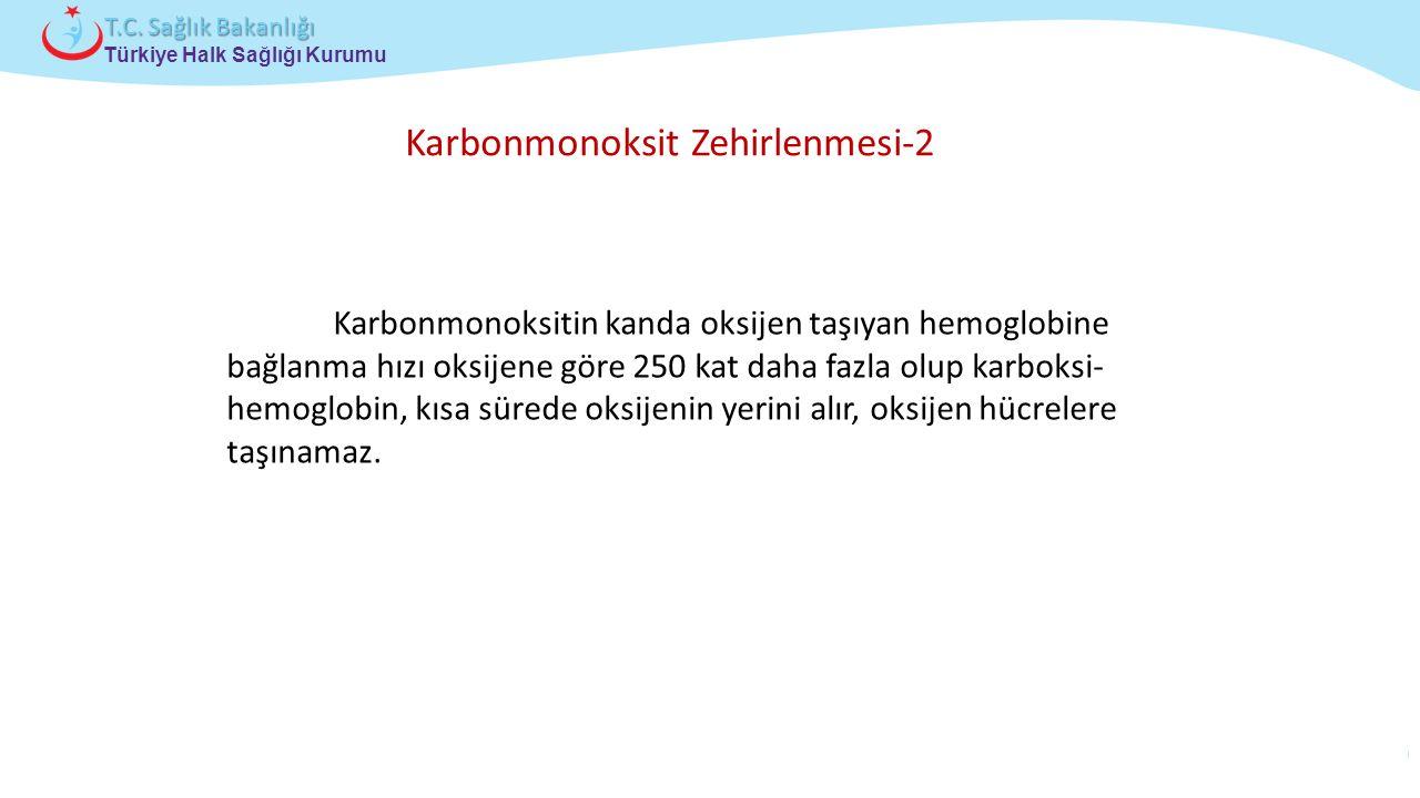 Çocuk ve Ergen Sağlığı Daire Başkanlığı Türkiye Halk Sağlığı Kurumu T.C. Sağlık Bakanlığı Karbonmonoksitin kanda oksijen taşıyan hemoglobine bağlanma