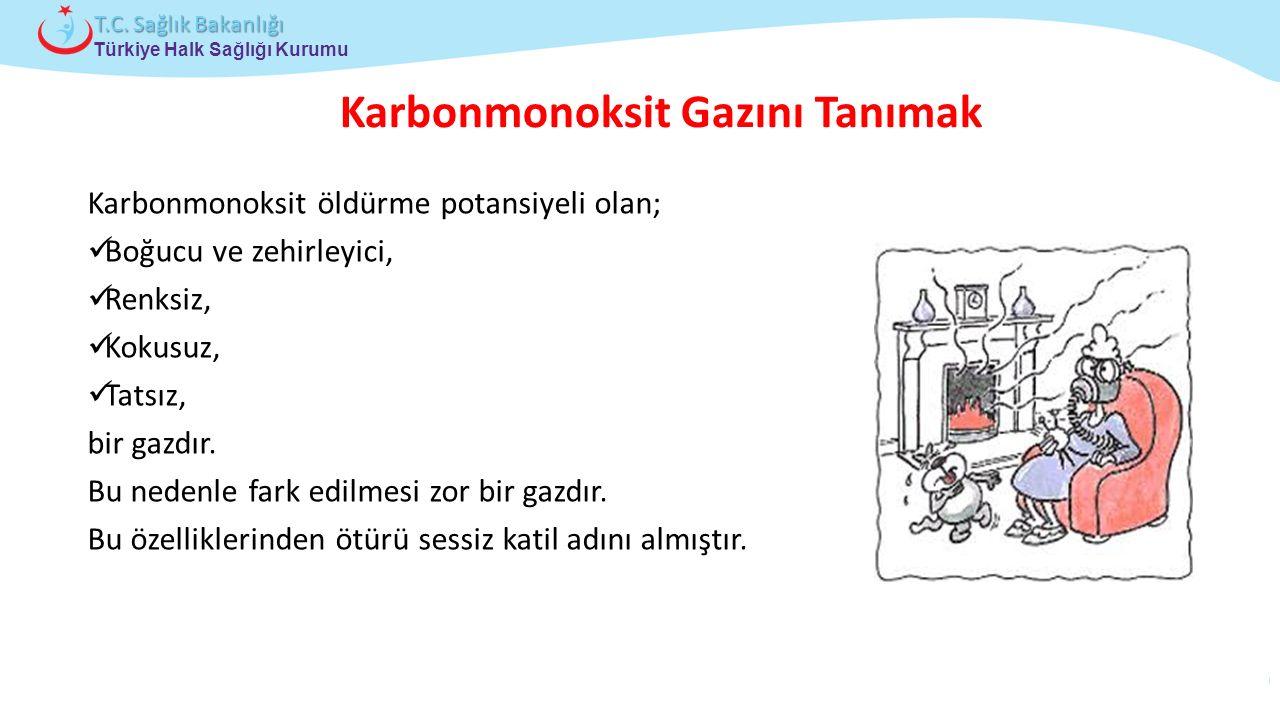 Çocuk ve Ergen Sağlığı Daire Başkanlığı Türkiye Halk Sağlığı Kurumu T.C. Sağlık Bakanlığı Karbonmonoksit öldürme potansiyeli olan; Boğucu ve zehirleyi