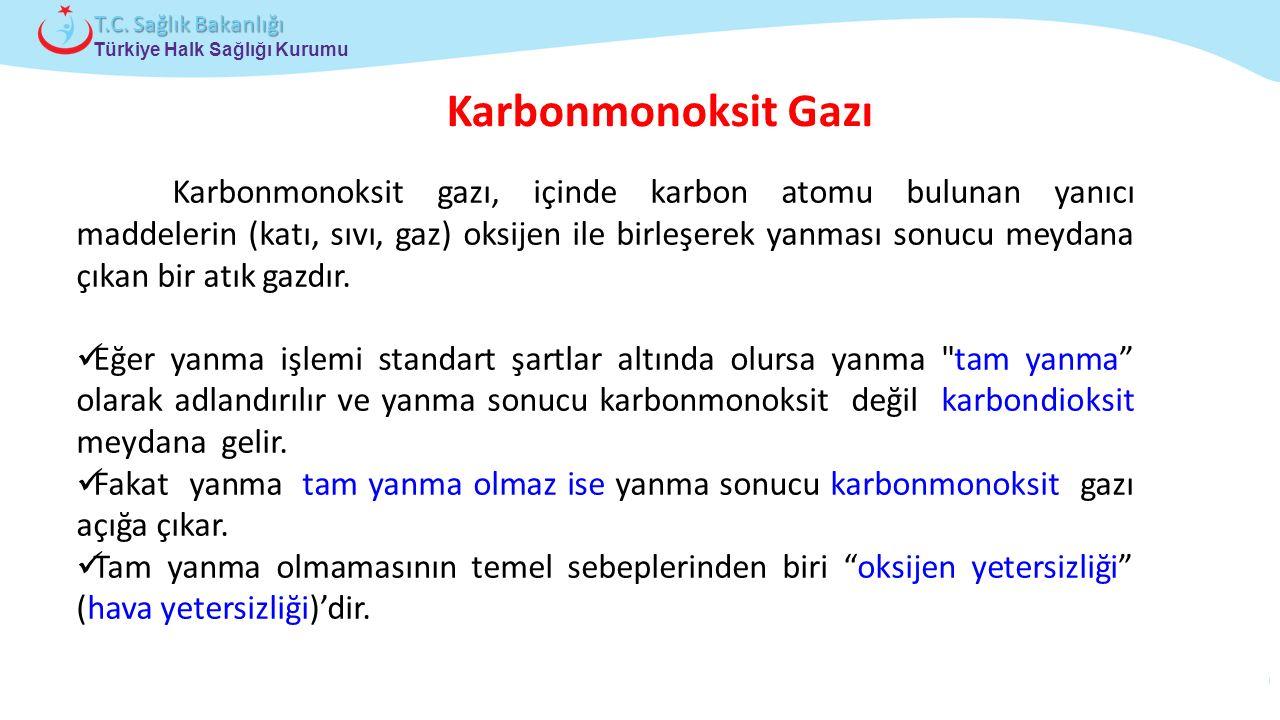 Çocuk ve Ergen Sağlığı Daire Başkanlığı Türkiye Halk Sağlığı Kurumu T.C. Sağlık Bakanlığı Karbonmonoksit Gazı Karbonmonoksit gazı, içinde karbon atomu