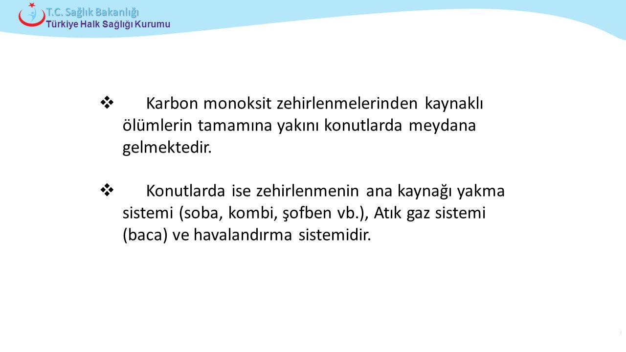 Çocuk ve Ergen Sağlığı Daire Başkanlığı Türkiye Halk Sağlığı Kurumu T.C. Sağlık Bakanlığı  Karbon monoksit zehirlenmelerinden kaynaklı ölümlerin tama