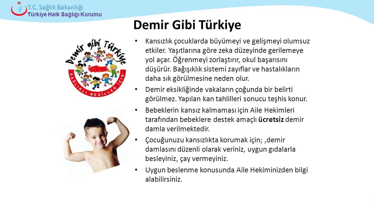 Çocuk ve Ergen Sağlığı Daire Başkanlığı Türkiye Halk Sağlığı Kurumu T.C. Sağlık Bakanlığı Kansızlık çocuklarda büyümeyi ve gelişmeyi olumsuz etkiler.