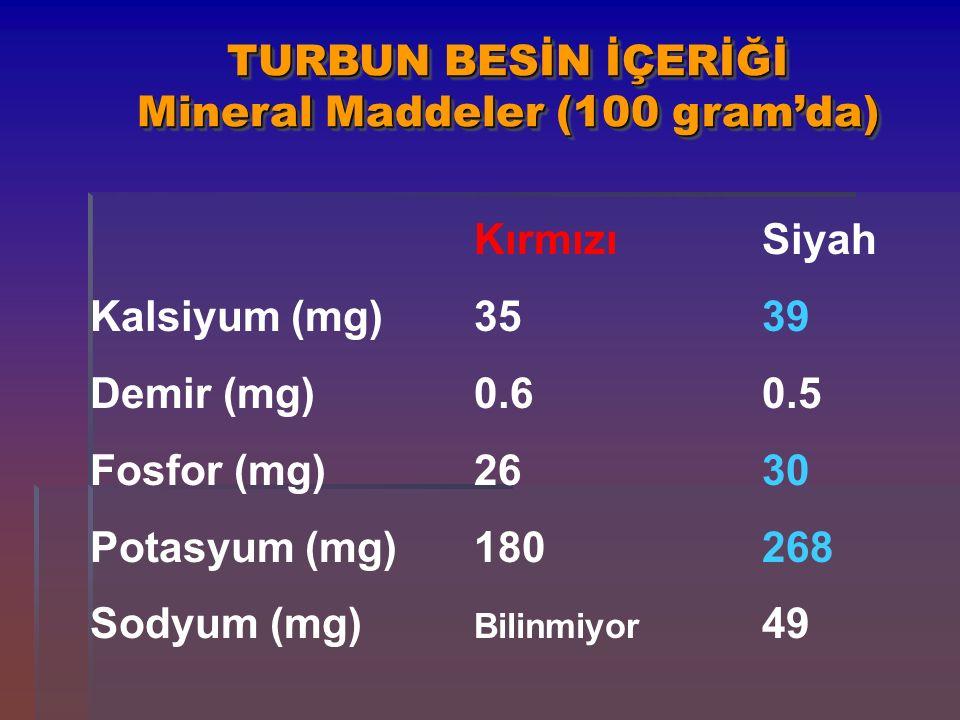 TURBUN BESİN İÇERİĞİ Mineral Maddeler (100 gram'da) KırmızıSiyah Kalsiyum (mg)3539 Demir (mg)0.60.5 Fosfor (mg)2630 Potasyum (mg)180268 Sodyum (mg) Bi