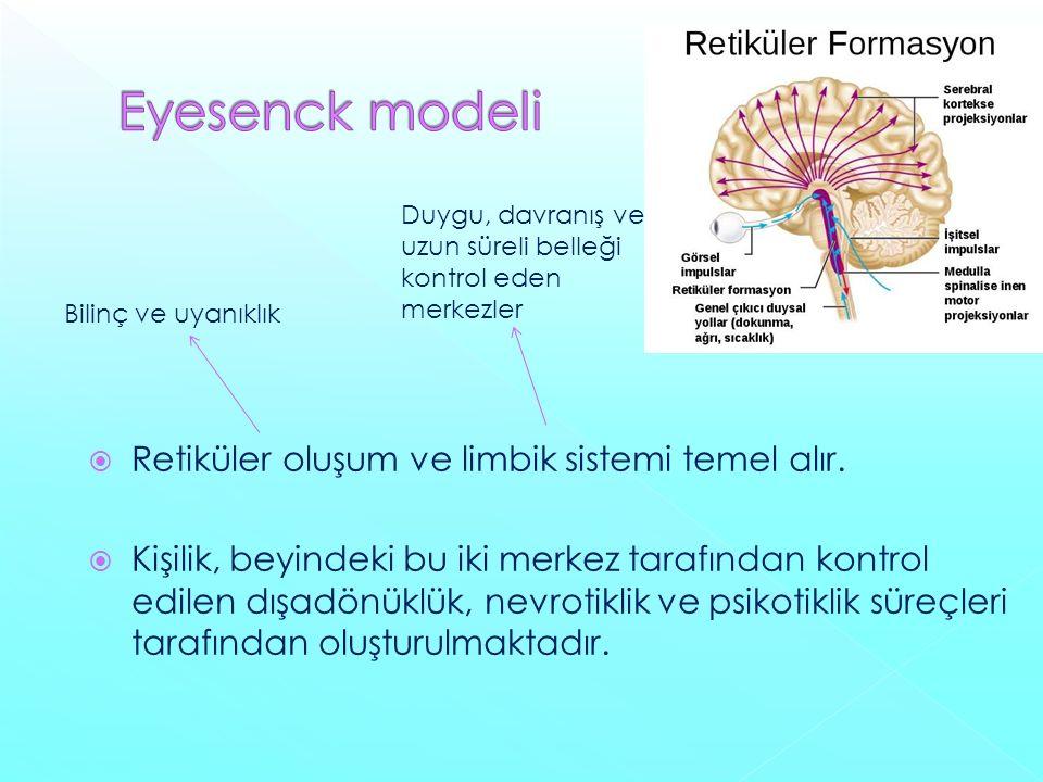 Retiküler oluşum ve limbik sistemi temel alır.