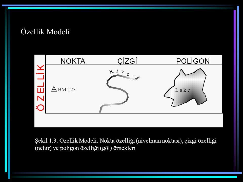 Özellik Modeli BM 123 R i v e r L a k e NOKTA ÇİZGİPOLİGON Ö Z E L L İ K Şekil 1.3. Özellik Modeli: Nokta özelliği (nivelman noktası), çizgi özelliği