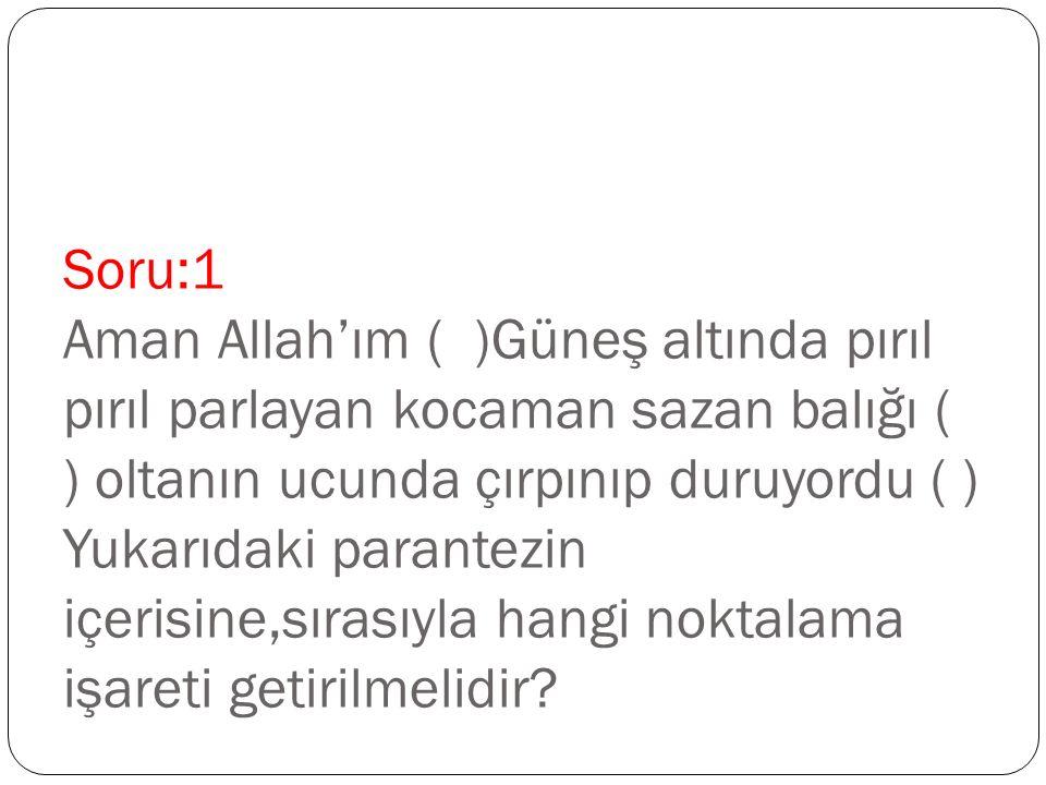 Soru:1 Aman Allah'ım ( )Güneş altında pırıl pırıl parlayan kocaman sazan balığı ( ) oltanın ucunda çırpınıp duruyordu ( ) Yukarıdaki parantezin içeris
