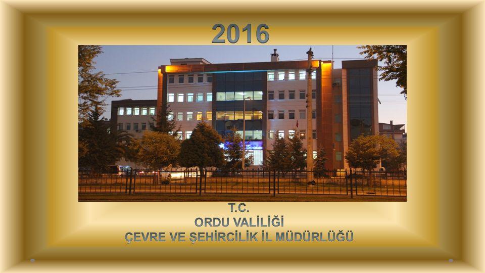 2015 YILI ÇED GEREKLİ DEĞİLDİR KARARLARININ SEKTÖREL DAĞILIMI