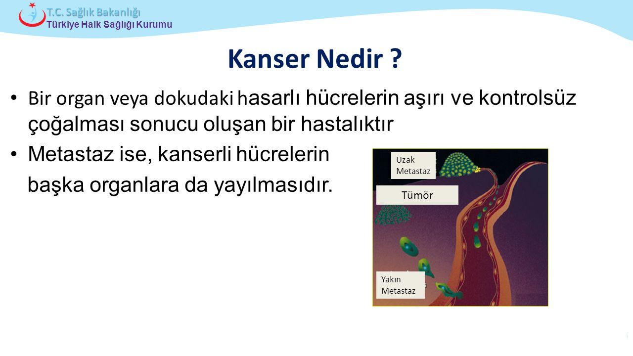 Çocuk ve Ergen Sağlığı Daire Başkanlığı Türkiye Halk Sağlığı Kurumu T.C. Sağlık Bakanlığı Kanser Nedir ? Bir organ veya dokudaki h asarlı hücrelerin a