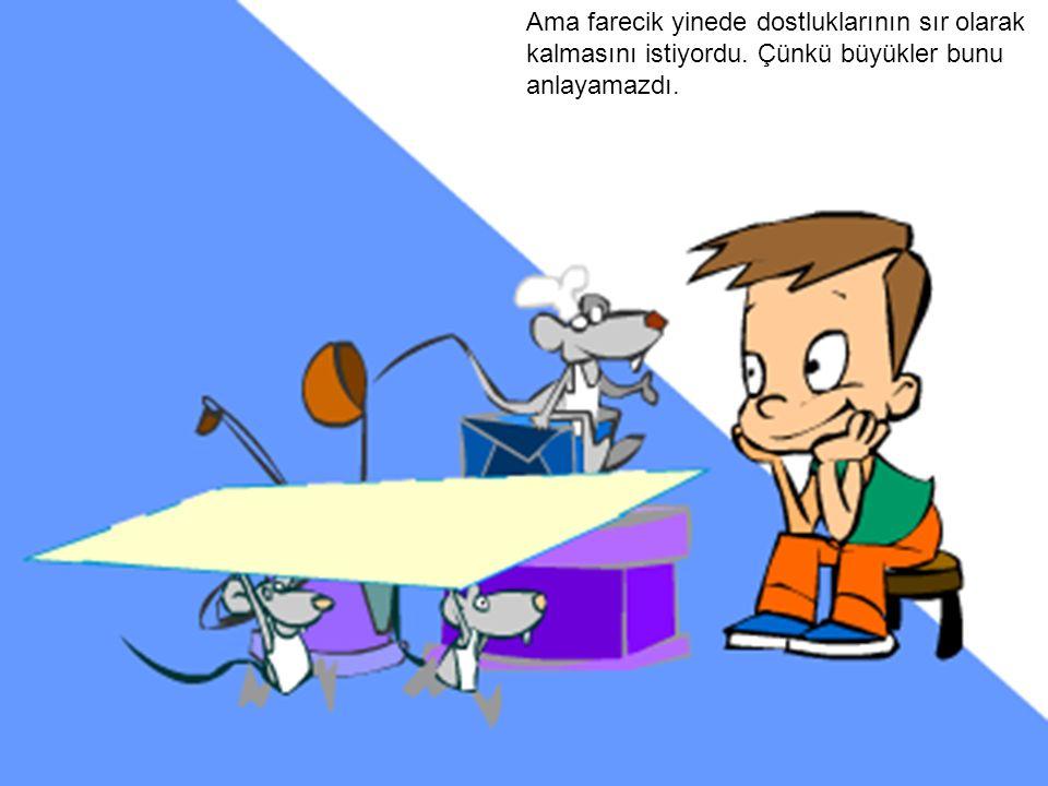Ama farecik yinede dostluklarının sır olarak kalmasını istiyordu. Çünkü büyükler bunu anlayamazdı.