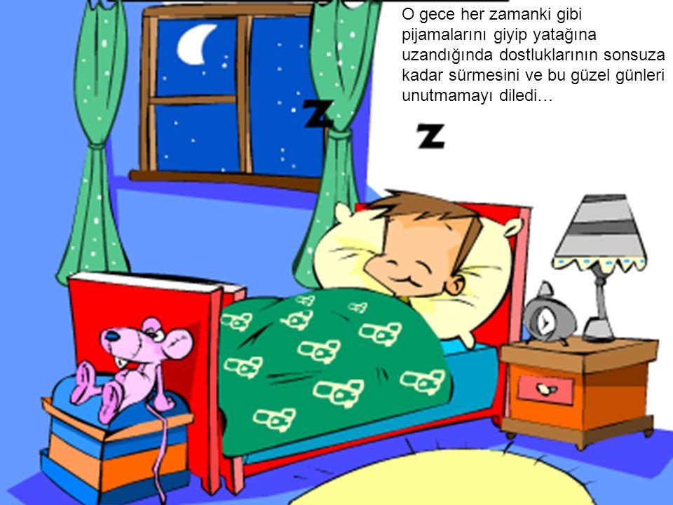 O gece her zamanki gibi pijamalarını giyip yatağına uzandığında dostluklarının sonsuza kadar sürmesini ve bu güzel günleri unutmamayı diledi…