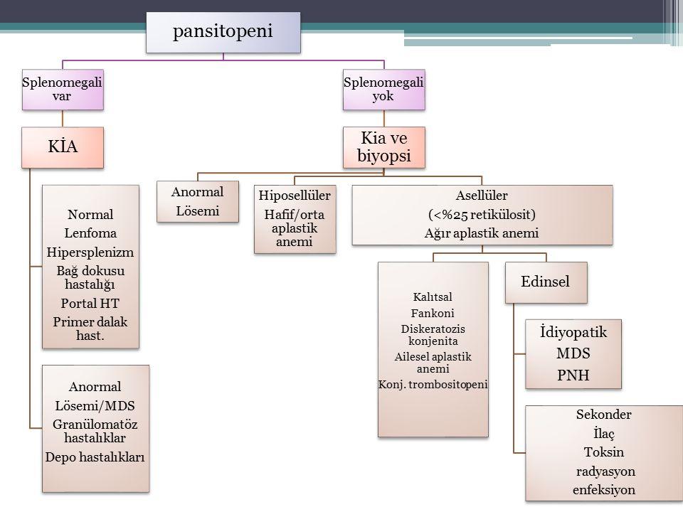 pansitopeni Splenomegali var KİA Normal Lenfoma Hipersplenizm Bağ dokusu hastalığı Portal HT Primer dalak hast. Anormal Lösemi/MDS Granülomatöz hastal