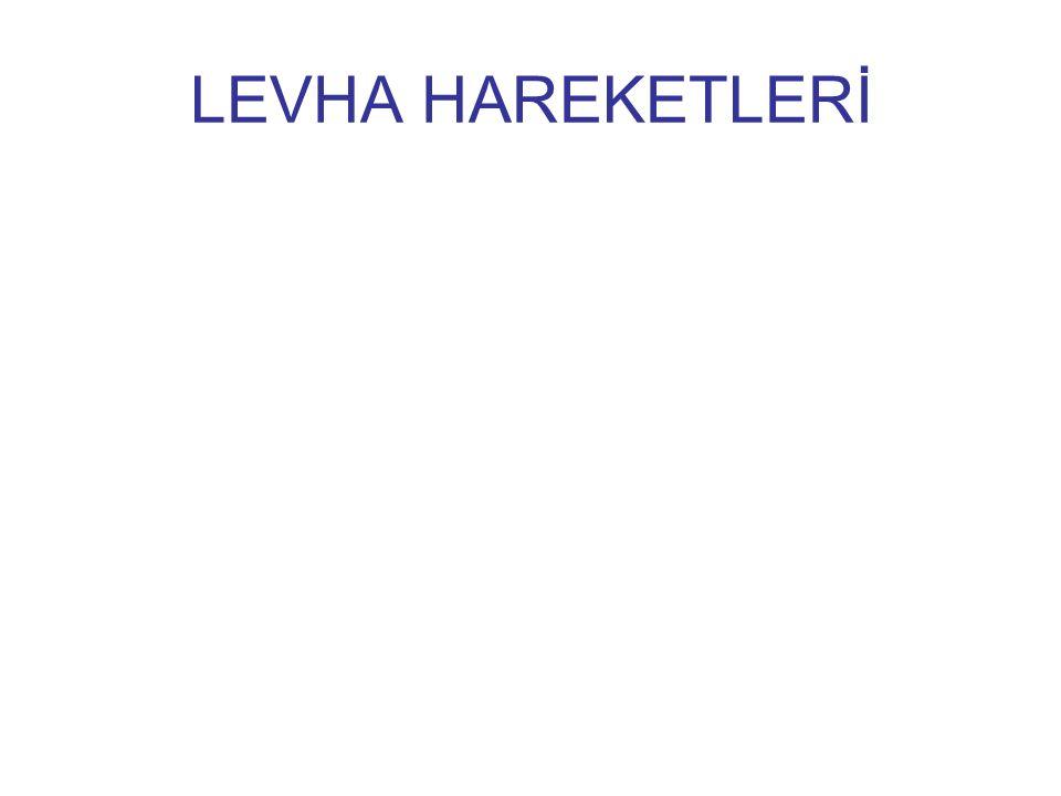 LEVHA HAREKETLERİ