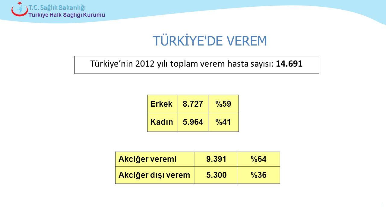 Çocuk ve Ergen Sağlığı Daire Başkanlığı Türkiye Halk Sağlığı Kurumu T.C. Sağlık Bakanlığı Türkiye'nin 2012 yılı toplam verem hasta sayısı: 14.691 Erke