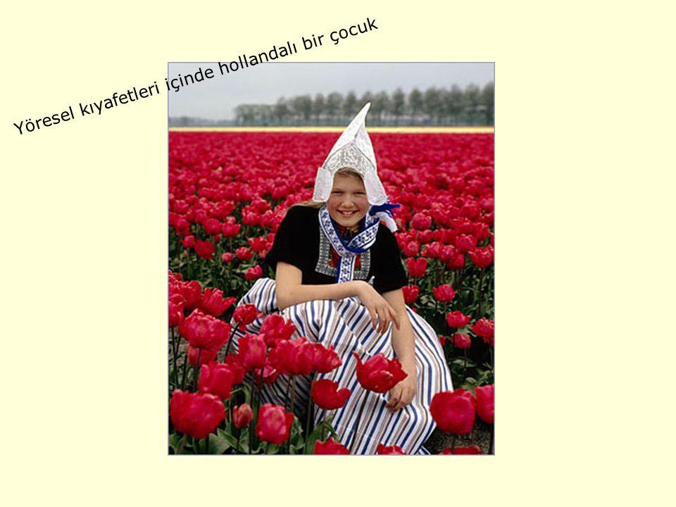 Yöresel kıyafetleri içinde hollandalı bir çocuk