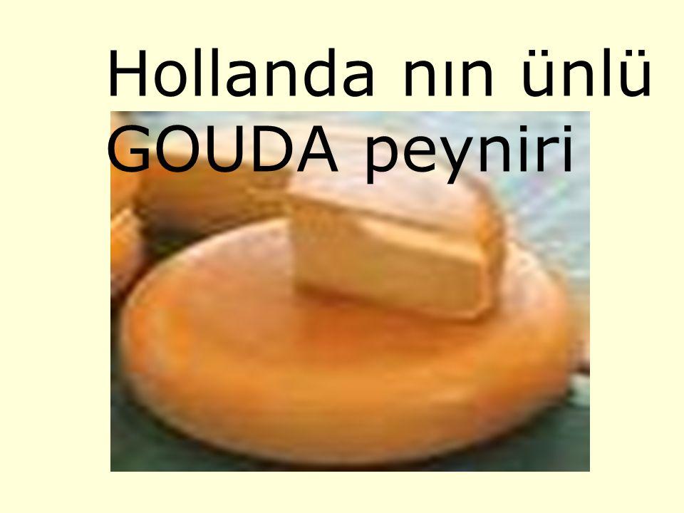 Hollanda çocuk oyunu Bizdeki körebe oyununun bir benzerini Hollandalı çocuklar da oynuyor.Oyunun adı kör keçi anlamına gelen BLINDE- BUK.kör keçi olan çocuk bir hayvan postu giyer kimin alnına iki kere dokunursa YANDI denilir ve oyun böyle devam eder.