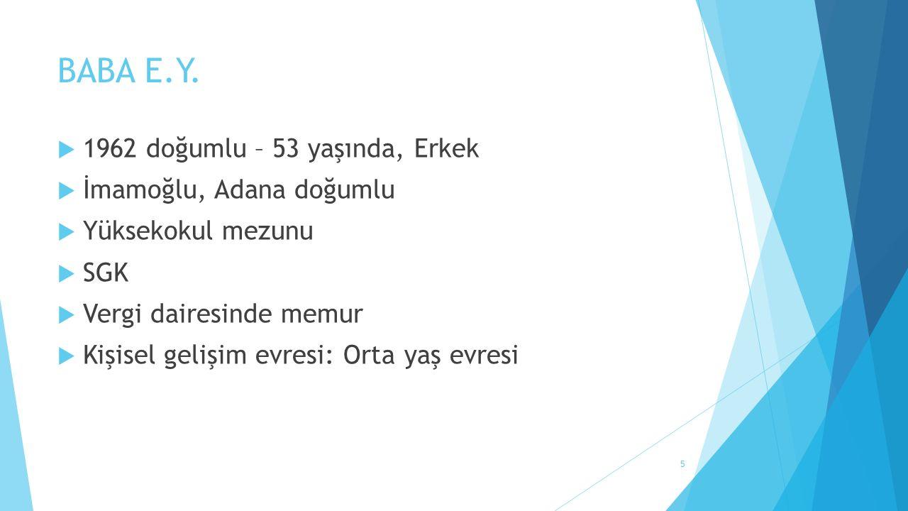 BABA E.Y.  1962 doğumlu – 53 yaşında, Erkek  İmamoğlu, Adana doğumlu  Yüksekokul mezunu  SGK  Vergi dairesinde memur  Kişisel gelişim evresi: Or
