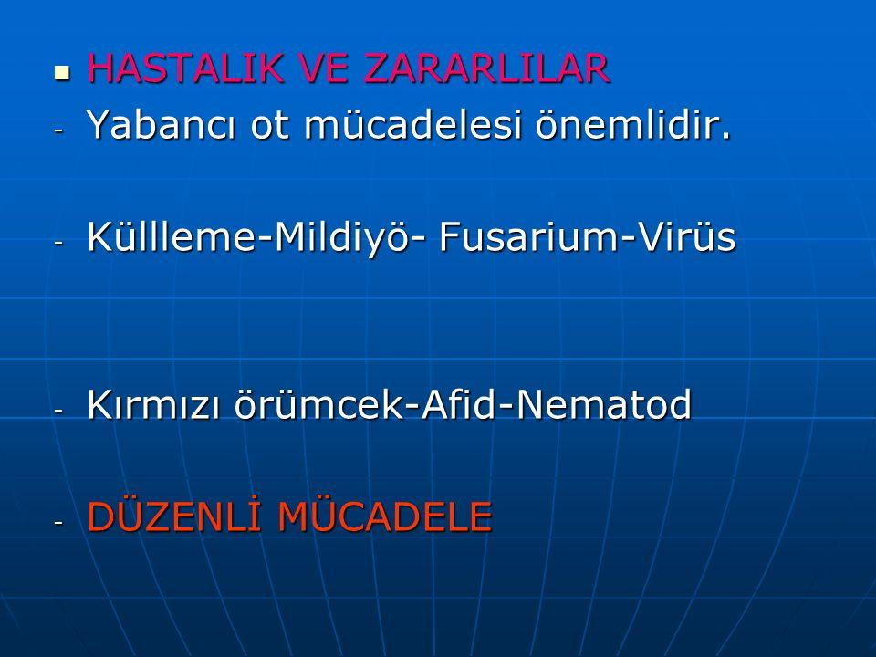 HASTALIK VE ZARARLILAR HASTALIK VE ZARARLILAR - Yabancı ot mücadelesi önemlidir. - Küllleme-Mildiyö- Fusarium-Virüs - Kırmızı örümcek-Afid-Nematod - D