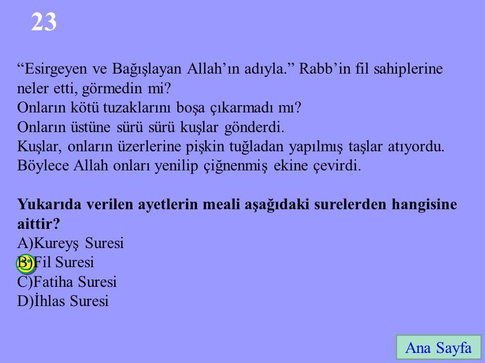 23 Ana Sayfa Esirgeyen ve Bağışlayan Allah'ın adıyla. Rabb'in fil sahiplerine neler etti, görmedin mi.