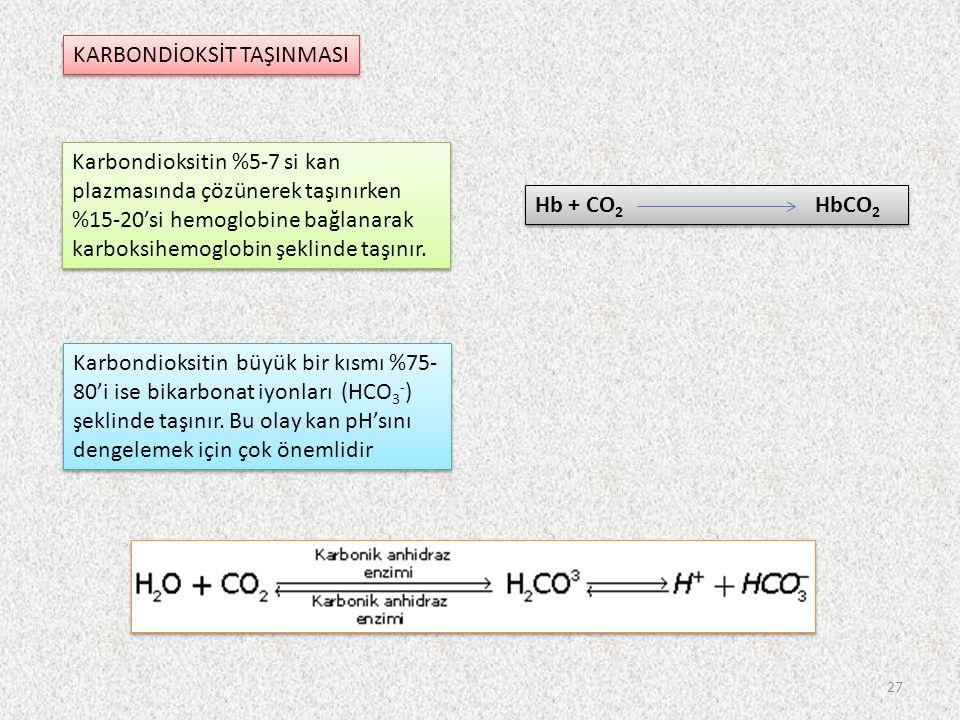 KARBONDİOKSİT TAŞINMASI Karbondioksitin %5-7 si kan plazmasında çözünerek taşınırken %15-20'si hemoglobine bağlanarak karboksihemoglobin şeklinde taşınır.
