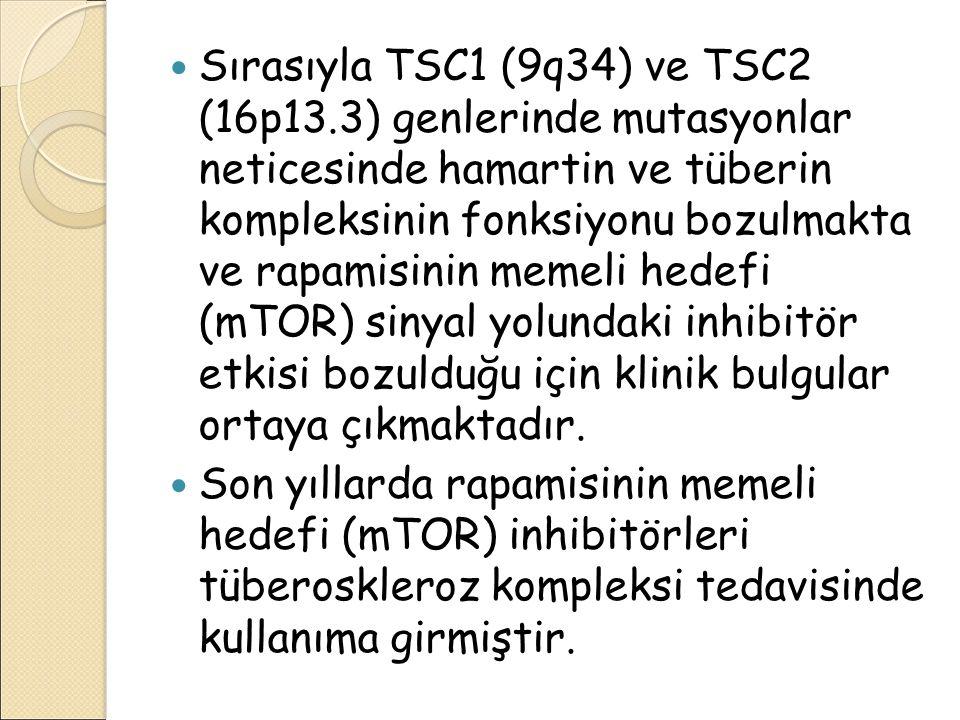 Sırasıyla TSC1 (9q34) ve TSC2 (16p13.3) genlerinde mutasyonlar neticesinde hamartin ve tüberin kompleksinin fonksiyonu bozulmakta ve rapamisinin memel