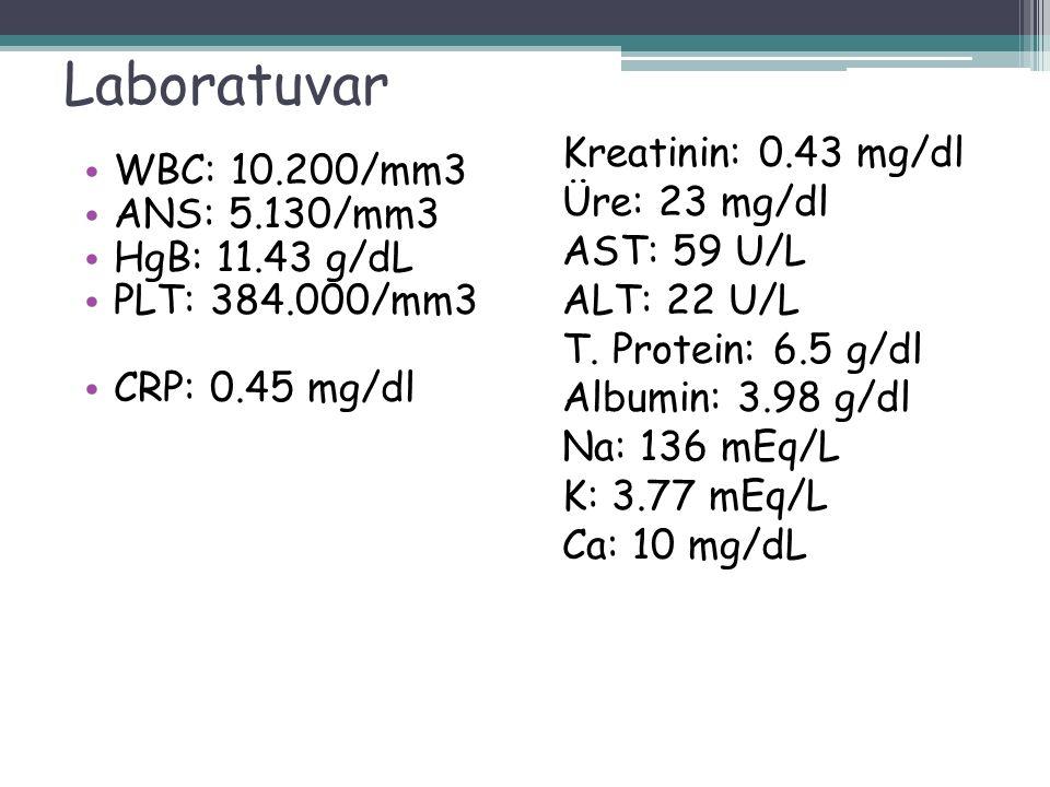 Laboratuvar WBC: 10.200/mm3 ANS: 5.130/mm3 HgB: 11.43 g/dL PLT: 384.000/mm3 CRP: 0.45 mg/dl Kreatinin: 0.43 mg/dl Üre: 23 mg/dl AST: 59 U/L ALT: 22 U/L T.