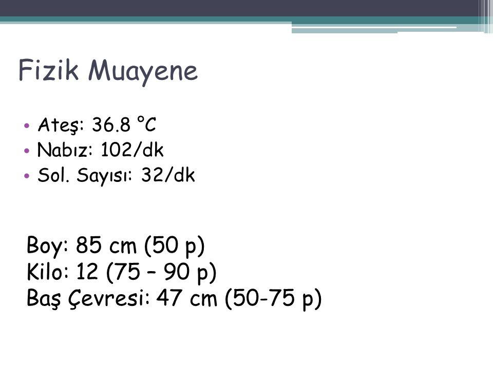 Fizik Muayene Ateş: 36.8 °C Nabız: 102/dk Sol.