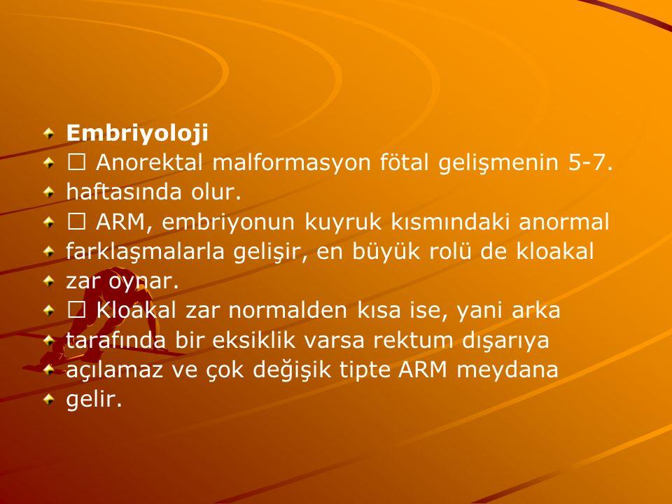 Embriyoloji Anorektal malformasyon fötal gelişmenin 5-7.