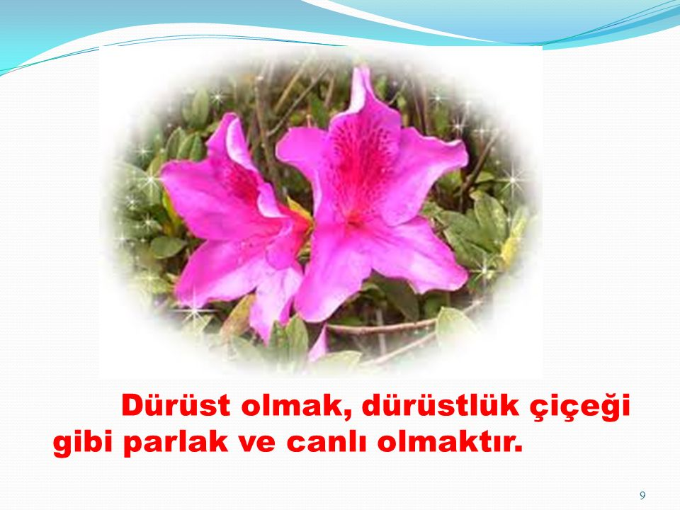Dürüst olmak, dürüstlük çiçeği gibi parlak ve canlı olmaktır. 9