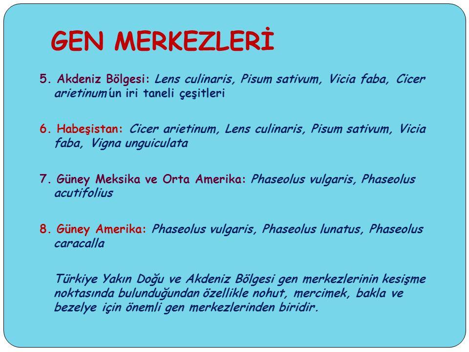GEN MERKEZLERİ 5.