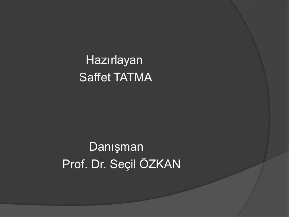 Hazırlayan Saffet TATMA Danışman Prof. Dr. Seçil ÖZKAN