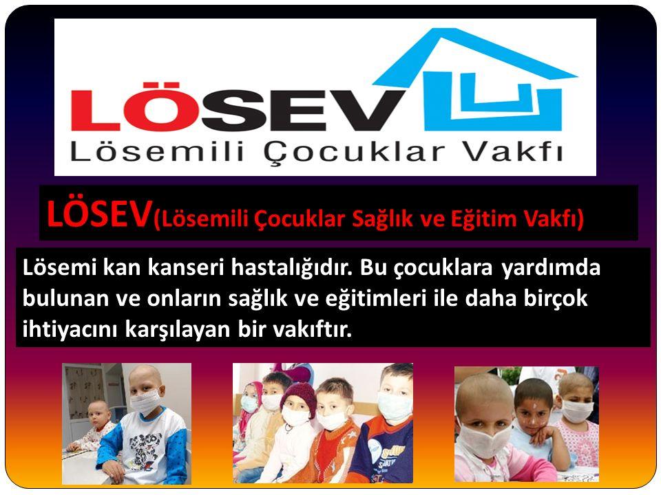 LÖSEV ( LÖSEV (Lösemili Çocuklar Sağlık ve Eğitim Vakfı) Lösemi kan kanseri hastalığıdır.