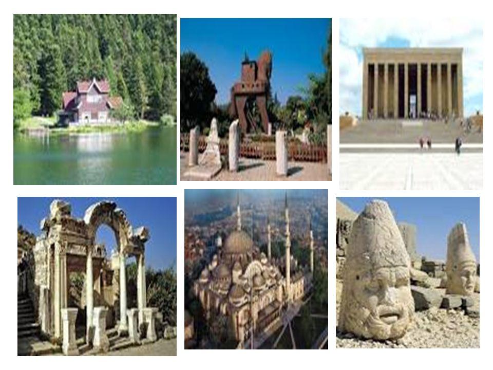 Kıtalar üzerinde coğrafi özellikleri, yaşam biçimleri, kültürleri birbirinden farklı birçok ülke vardır.